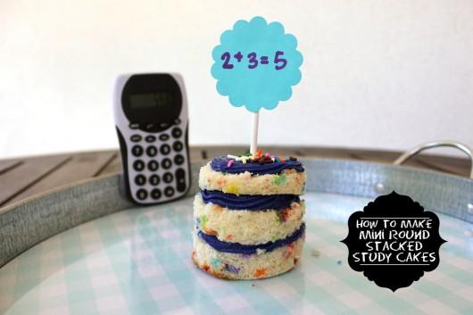 study-cakes