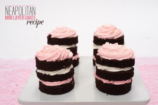 neapolitan-mini-cake