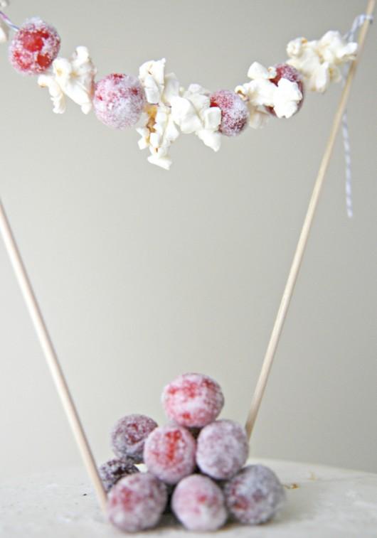 cranberry-close-up
