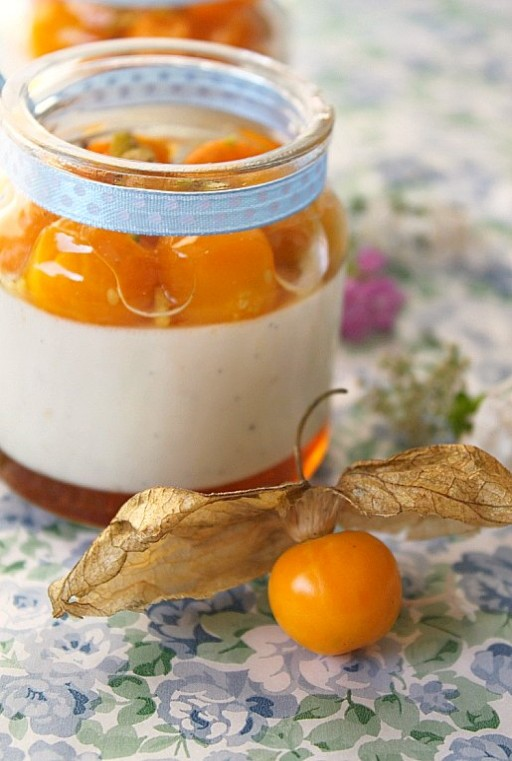 vanilla-honey-gooseberry-panna-cotta