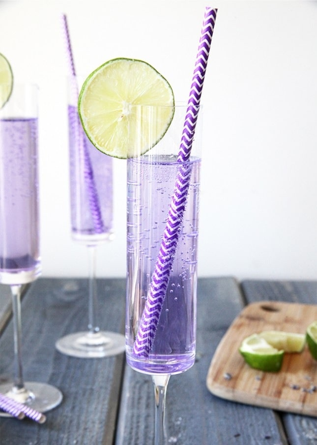 Blueberry Lavender Vodka Spritzer Recipe — Dishmaps