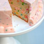 DOUBLE LAYER CONFETTI CAKE RECIPE