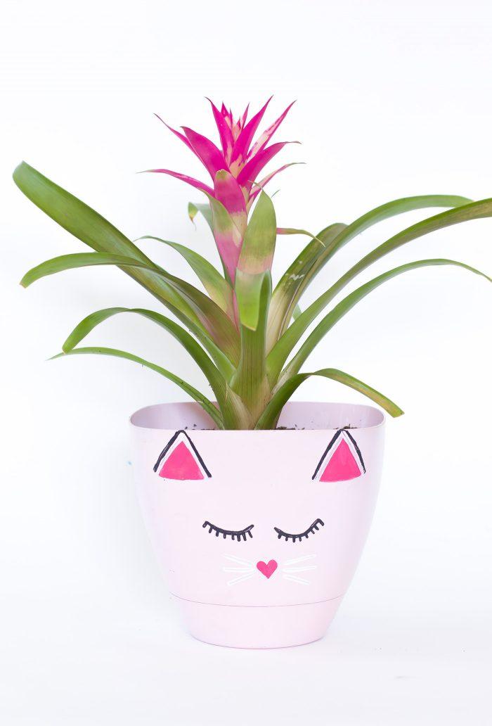 diy-kitty-planter