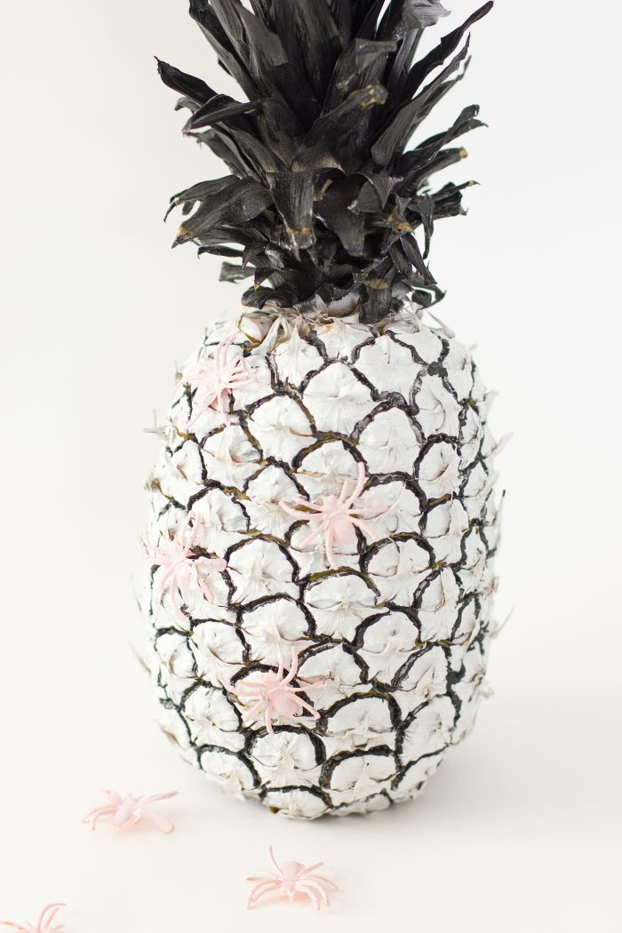 black-and-white-pineapple-pink-spiders