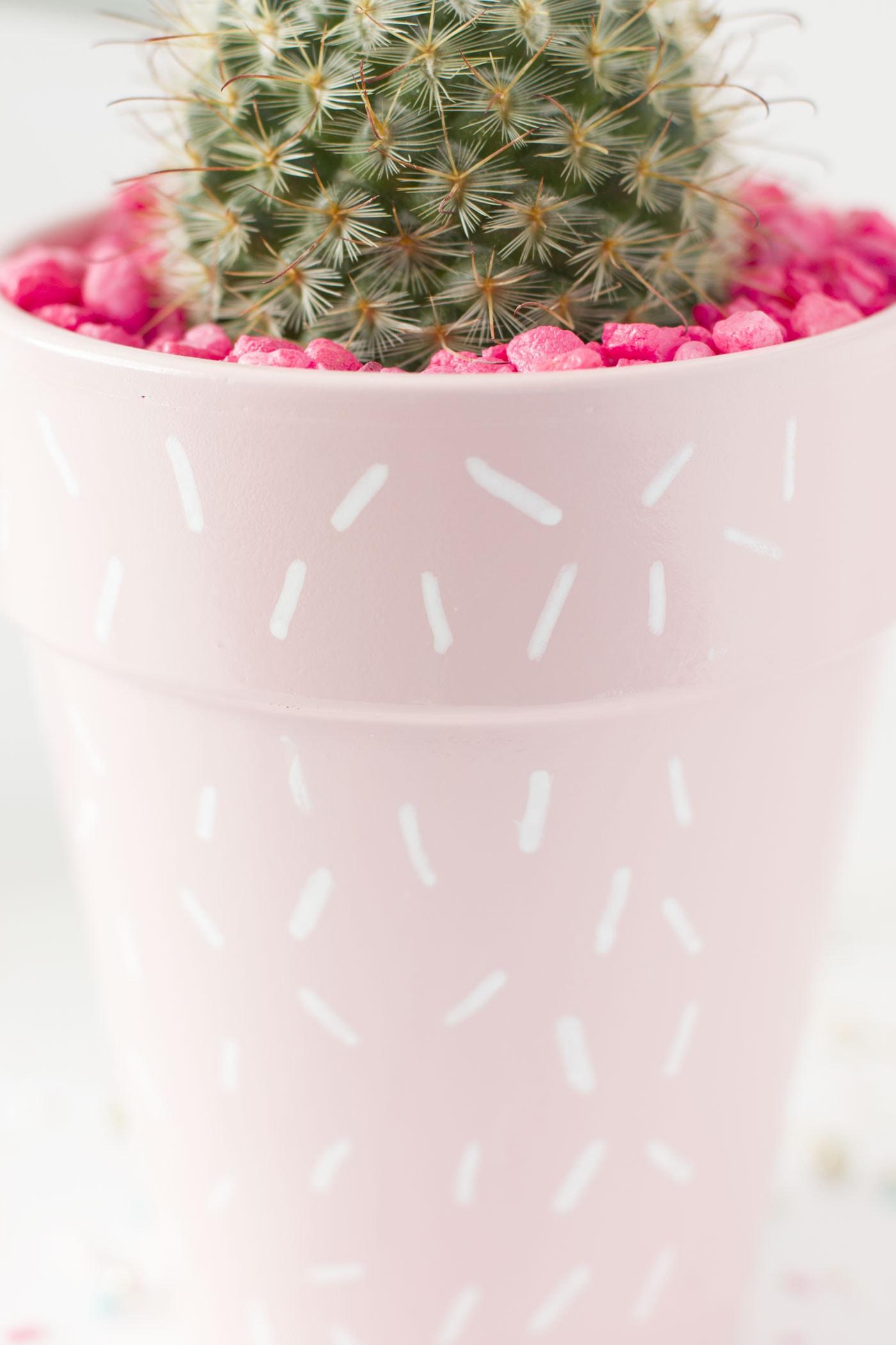 cactus-planter-diy-sprinkle-pink-chic-cute