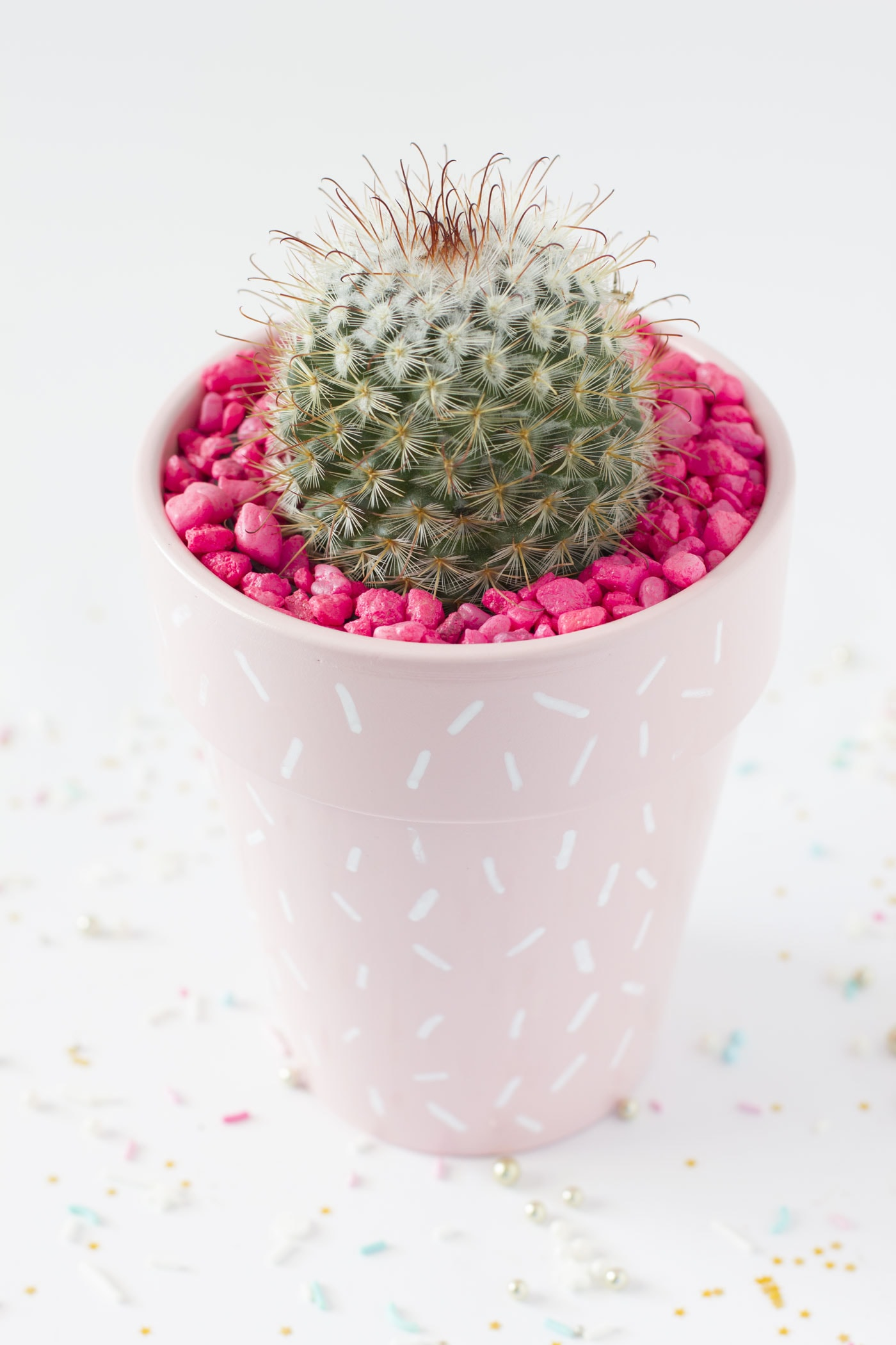 cactus-sprinkle-pink-chic-planter-idea