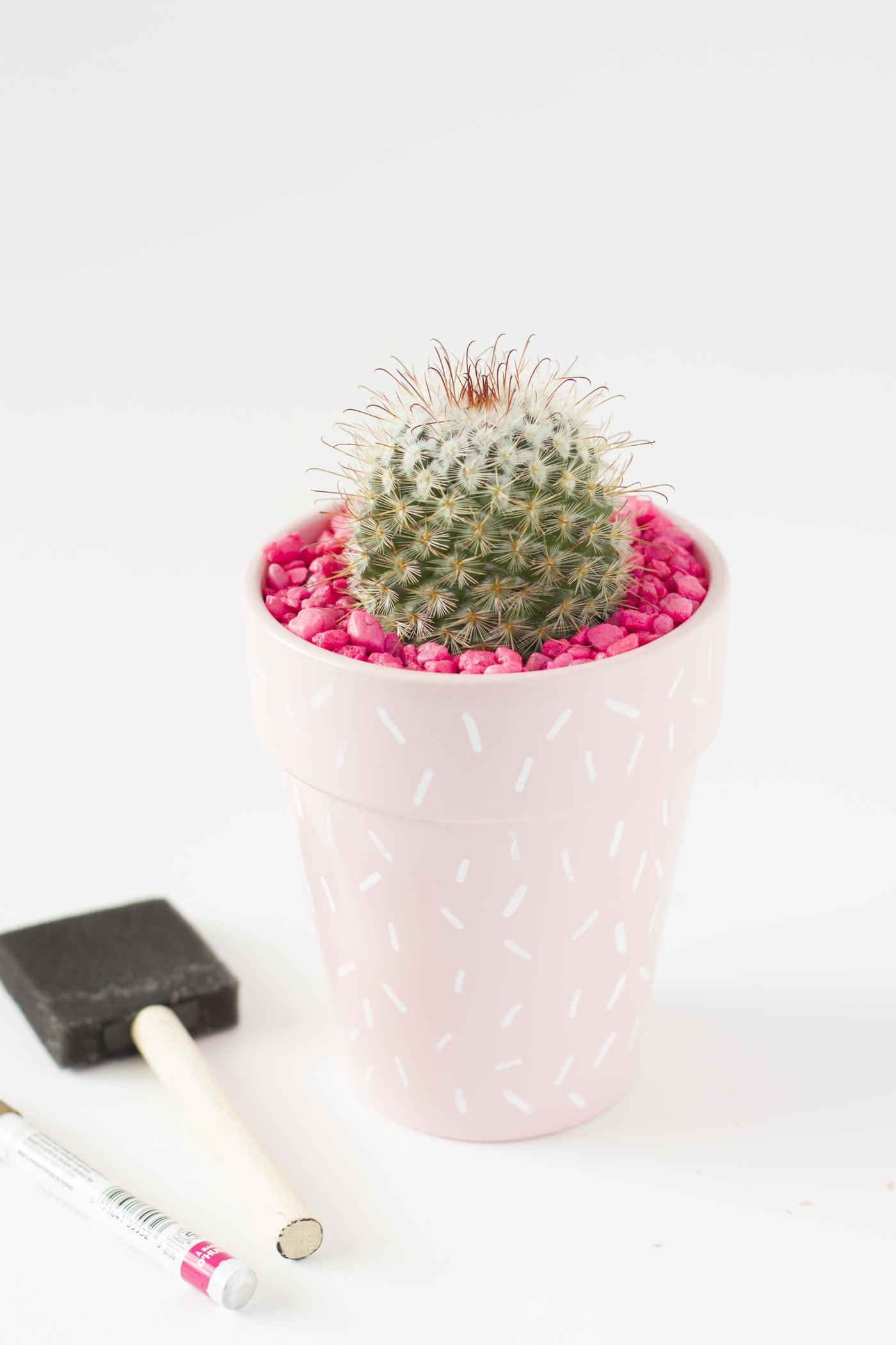 cactus-sprinkle-pink-planter